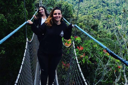 rwanda chimpanzee trekking is unique experience you need to experience